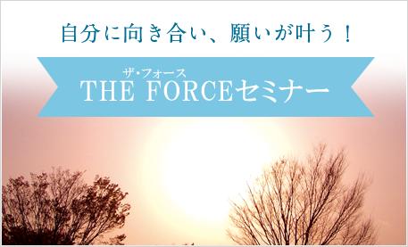 自分に向き合い、願いが叶う!THE FORCEセミナー